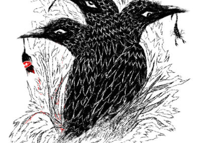 3 headed raven